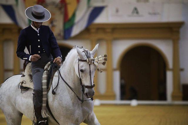 XV Copa del Rey de Doma Vaquera en La Real Escuela Andaluza del Arte Ecuestre
