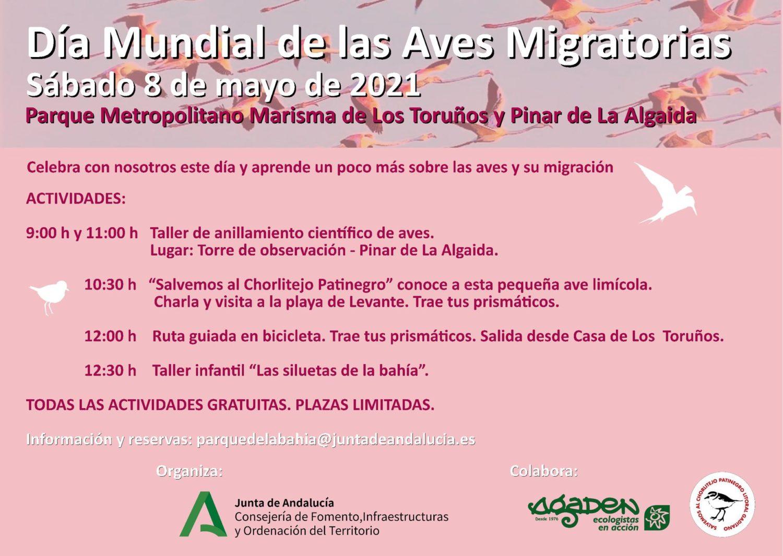 Actividades del Día Mundial de las Aves Migratorias en El Parque de los Toruños