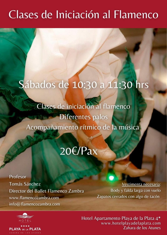 Clases de Iniciación al Flamenco en el Hotel Playa de la Plata