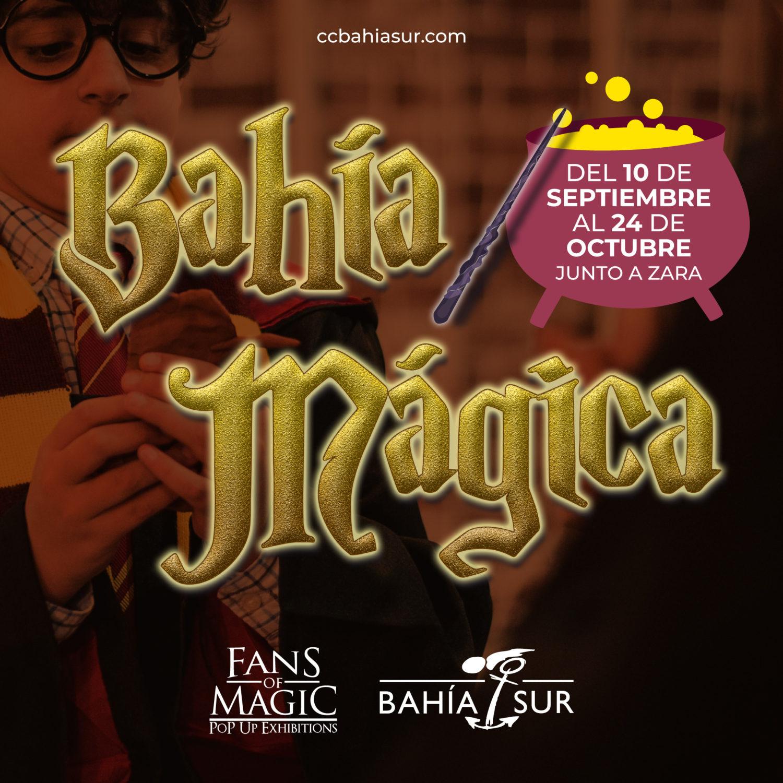 Exposición Bahía Mágica en Bahía Sur, San Fernando